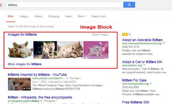 Google SERPs image block with kittens